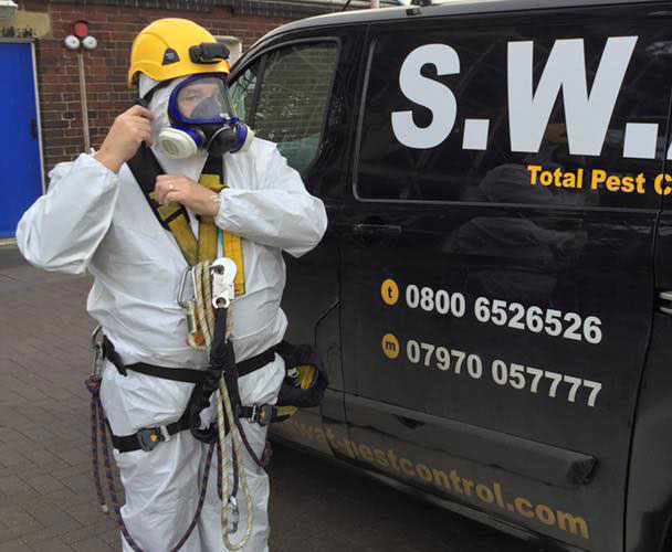 Bird Dropping Removal by SWAT Pest Control Ltd