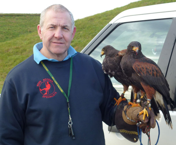 Falconry services by SWAT Pest Control Ltd