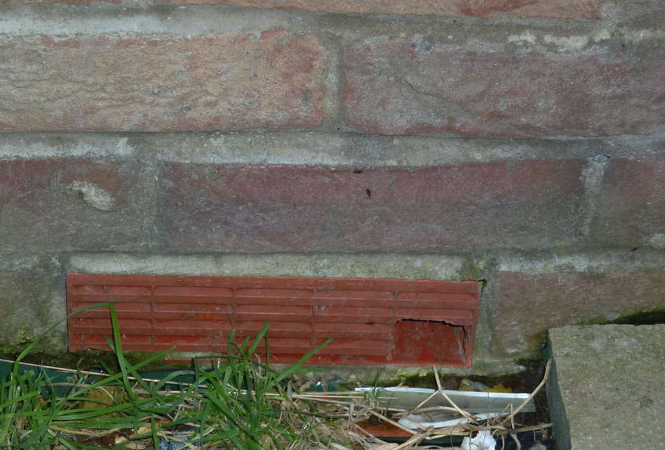 Top Tip - article by S W A T  Pest Control Lincolnshire