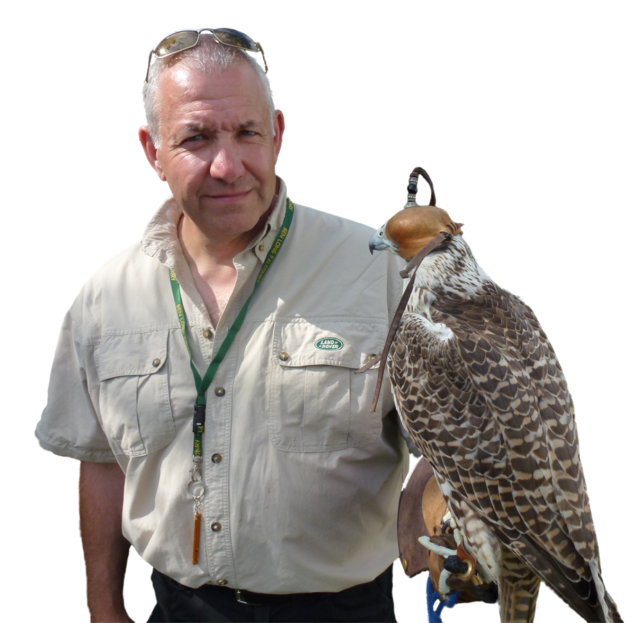 Falconry services by SWAT Pest Control Ltd.