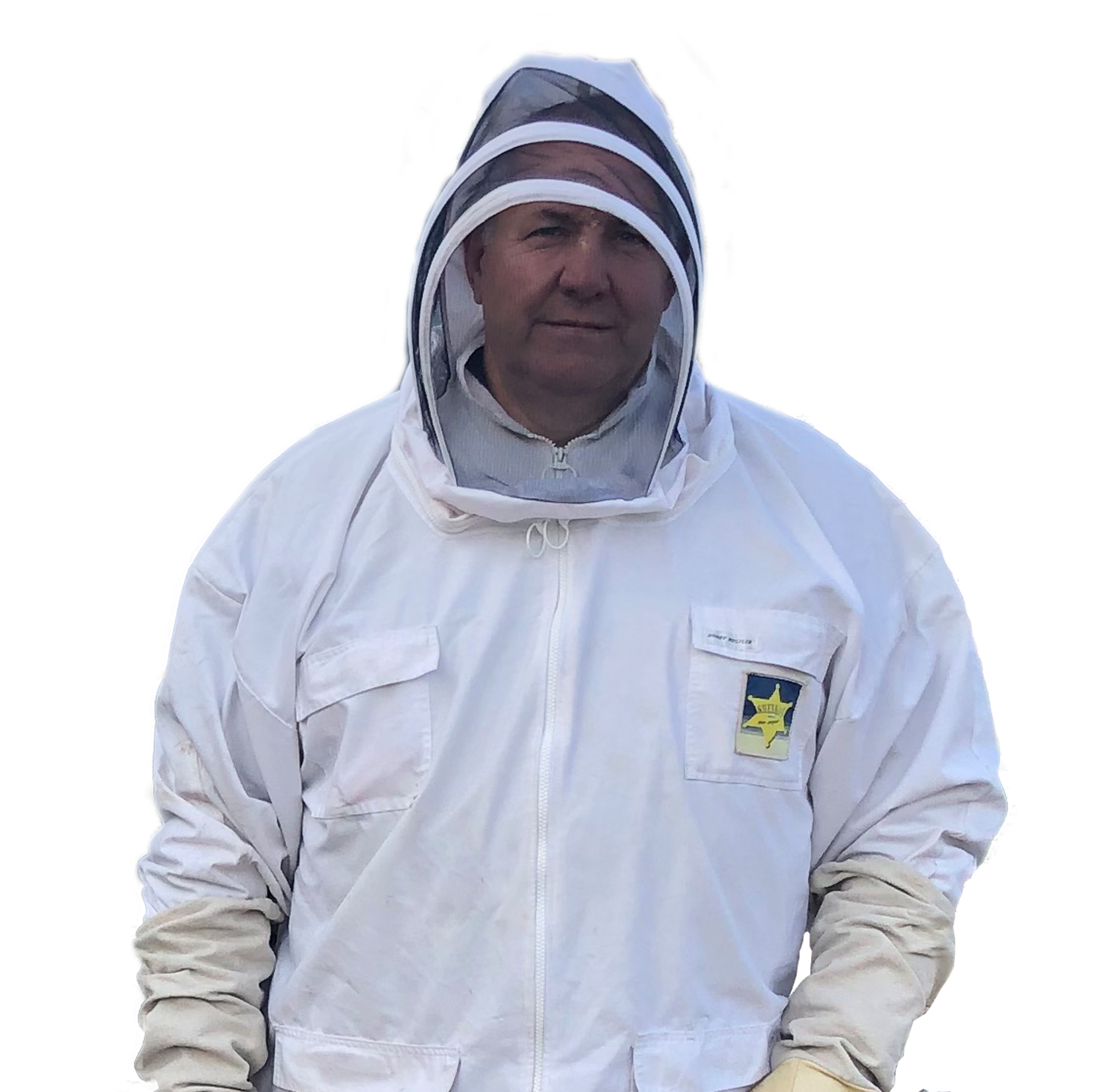 Bee control/ removal by SWAT Pest Control Ltd.