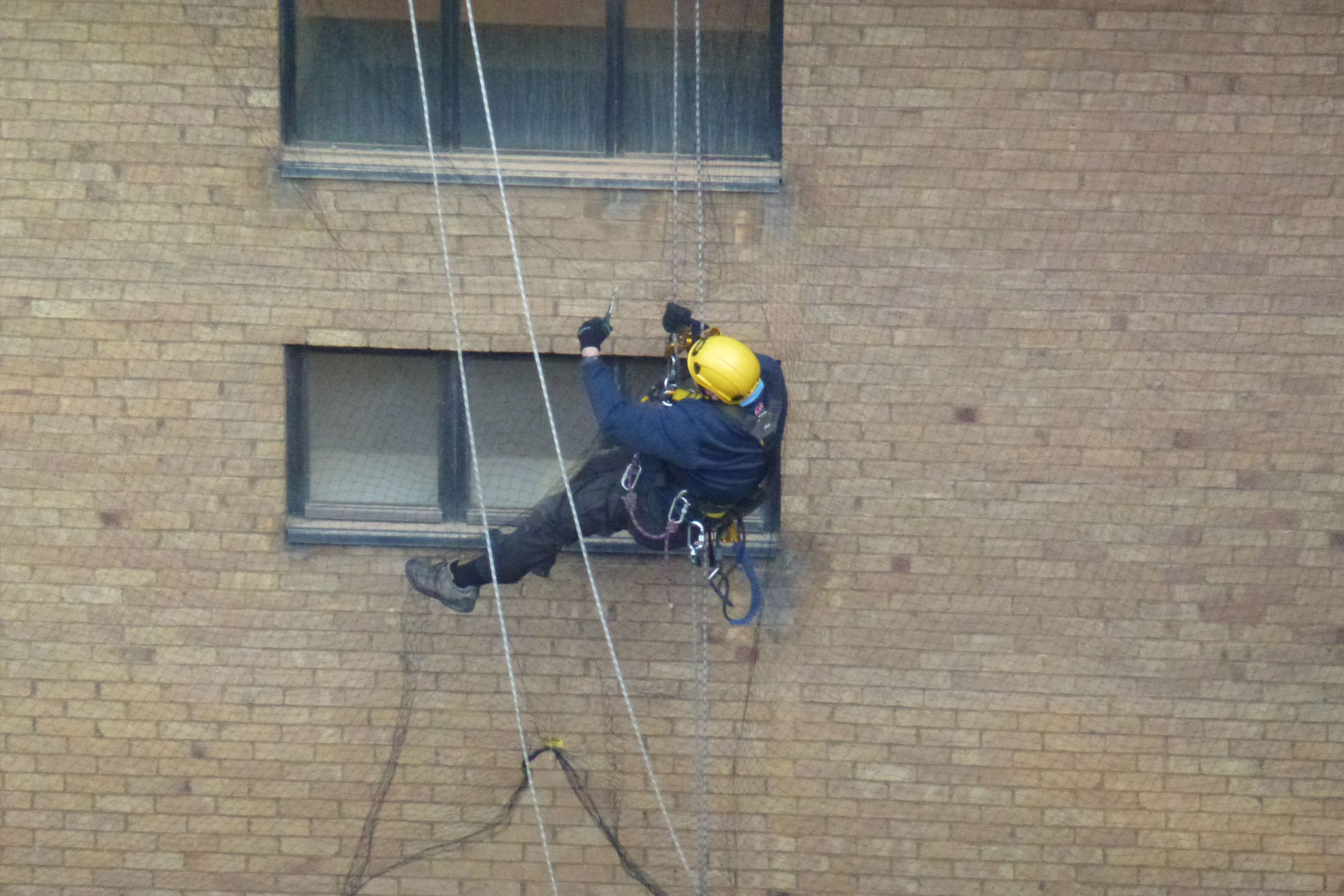 Rope access specialists pest control by SWAT Pest Control Ltd.